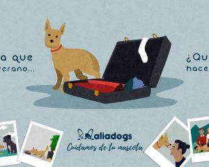 Diseño y comunicación para Aliadogs